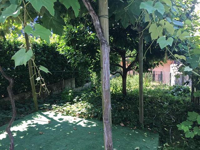 Rovio TissoT Immobilier : Maison 3.5 pièces