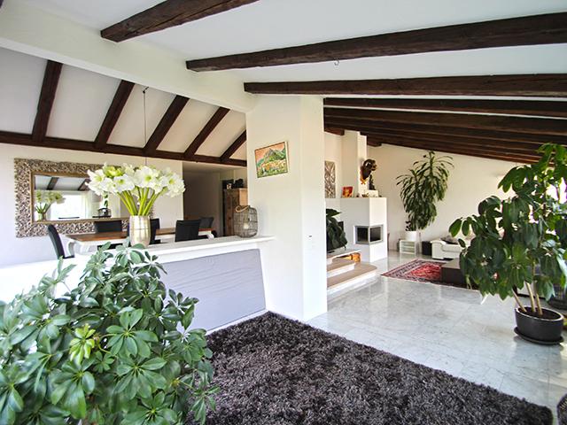 Bien immobilier - Stallikon - Villa 8.5 pièces