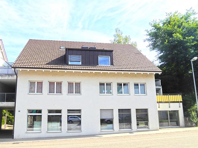 Bien immobilier - Möhlin - Commercial, Bureau, Dépôt 1.0 pièces