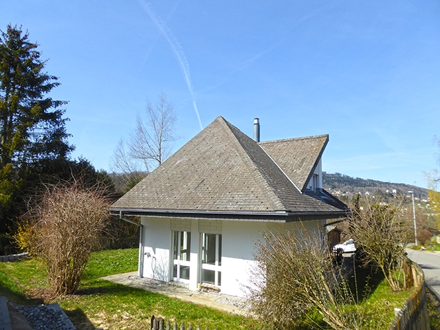 Bien immobilier - Menziken - Villa 5.5 pièces