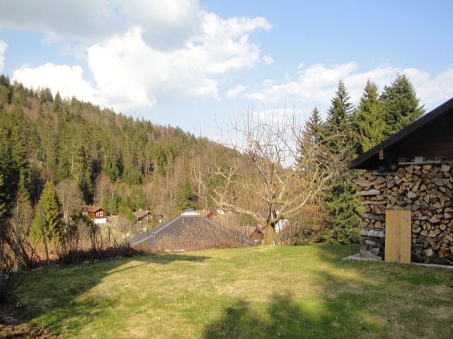 St-Cergue - Villa 6 Zimmer - Lux-Homes Berge Alpen Immobilien Prestige Charme Luxus TissoT