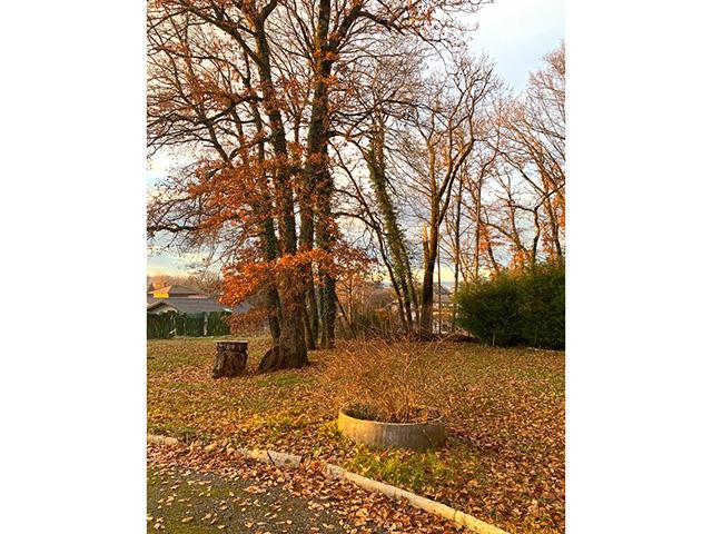 Armoy (Thonon-les-Bains) 74200 F - Villa individuelle 6.5 pièces - TissoT Immobilier