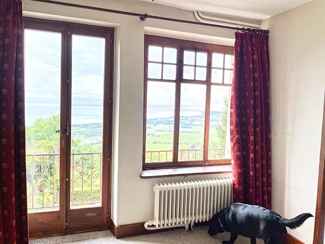 Bien immobilier - Essertines-sur-Rolle - Maison de maître 21.0 pièces